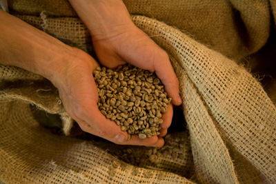 Purchase our fresh roasted coffee beans